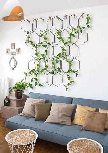 idea-per-pareti-con-piante-rampicanti