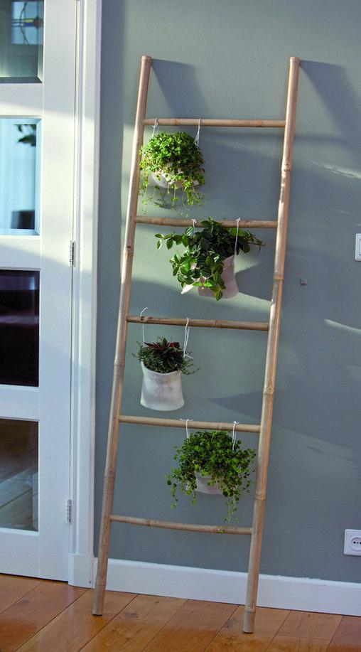 parete-con-scala-e-piante